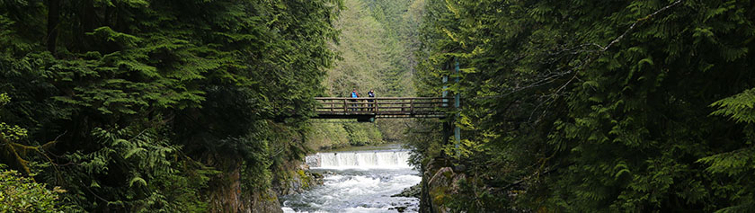 Capilano Canyon