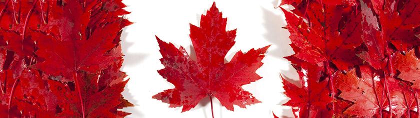 Kanadan kansalaisuuskokeessa