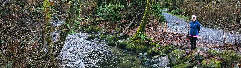 Lohennousua Serpentine Riverillä