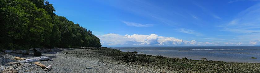 Tower Beach